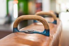 Pausch马体育设备在健身演播室 库存照片