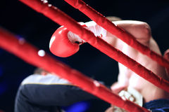 Pause during a boxing match Royalty Free Stock Image