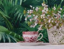 Pause-café dans le jardin exotique images libres de droits