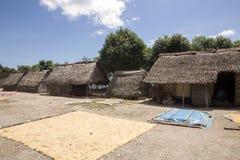 Pauvres cultivateurs d'algue de hutte, Nusa Penida, Indonésie images stock