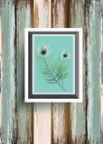 Pauw feater op houten achtergrond Vector Stock Foto's