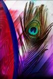 Pauwvaders met abstracte vector multicolored in de schaduw gestelde Achtergrond Vector illustratie stock afbeelding