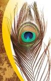 Pauwvaders met abstracte vector multicolored geweven in de schaduw gestelde Achtergrond Vector illustratie royalty-vrije stock afbeelding