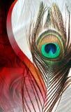 Pauwvaders met abstracte vector multicolored geweven in de schaduw gestelde Achtergrond Vector illustratie Stock Afbeeldingen