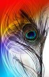 Pauwvaders met abstracte vector multicolored geweven in de schaduw gestelde Achtergrond Vector illustratie stock foto