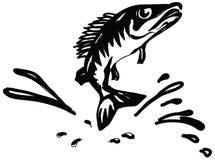 Pavão-do-mar dos peixes Imagens de Stock Royalty Free