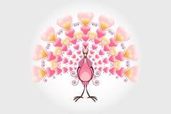 Pavão do pássaro do amor do Valentim Fotografia de Stock Royalty Free
