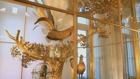 Pavão dourado no palácio vídeos de arquivo