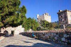 Pavão no castelo de Bodrum Foto de Stock