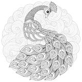 Pavão no estilo do zentangle Página antistress adulta da coloração ilustração do vetor