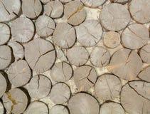 Pavé en cailloutis avec du bois, une route ou un chemin Fond naturel Photo stock