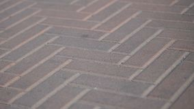 Pavés en parc dans le mouvement Fond des tuiles en pierre color?es sur le trottoir Blocs en pierre rouges un jour d'été banque de vidéos