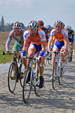 Pavés ronds dans l'excursion de la Flandre Photos libres de droits