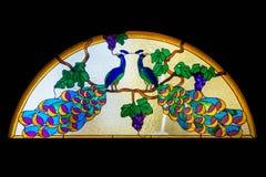 Pavões/vitral Fotografia de Stock