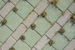 Pavage de la texture concrète de pavés ronds Image stock