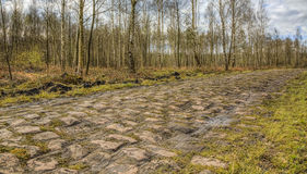 Pave d'Arenberg Stock Photography