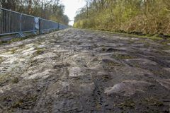 Pave d`Arenberg. Image of the famous cobblestone road from the forest of Arenberg Pave d`Arenberg. Every year it is part of the route of Paris Roubaix one of the Royalty Free Stock Photos