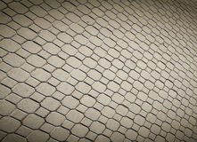 Pave stones of sidewalk Royalty Free Stock Images