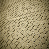 Pave stones of sidewalk Royalty Free Stock Photo