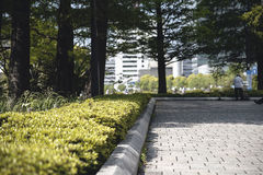 Paved driveway and gardens Royalty Free Stock Photos