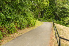 Paved Forest Path Royalty Free Stock Photos
