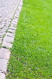 Paved garden path and lawn Royalty Free Stock Image