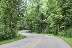 Paved highway twisting and curving through the forest in the summer time. Royalty Free Stock Image