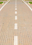 Paved lane close up Royalty Free Stock Photos