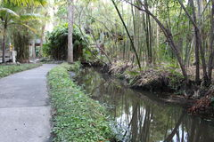 Paved path along river in a Botanical garden at Florida Institute of Technology, Melbourne Florida. Paved path along narrow river in a botanical garden at stock images