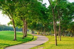 Paved path curving through the park. Peaceful pathway. Stock Image