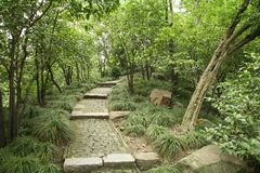 Paved path in park. Paved path through park in China Stock Photography