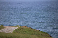 Paved path winds around coastal vista Royalty Free Stock Photo