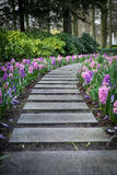 Paved pathway with flowers on sides. In Keukenhof park, Holland Stock Photo