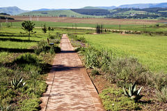 Paved Pathway Leading to Metal Sculpture of Nelson Mandela. Howick, KwaZulu-Natal, South Africa - 30 December 2013: Long Paved Walkway leads to Metal sculpture Royalty Free Stock Photo