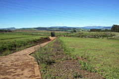 Paved Pathway Leading to Metal Scuplture of Nelson Mandela. Howick, KwaZulu-Natal, South Africa - 30 December 2013: Long Paved Walkway leads to Metal sculpture Royalty Free Stock Photos