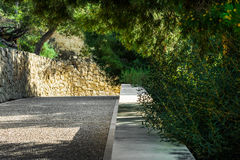 Paved pathway in a park, green trees with dangling branches, shadow and sunglight Royalty Free Stock Images