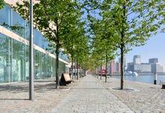 Paved pedestrian promenade in Rotterdam Netherlands Holland Royalty Free Stock Photo