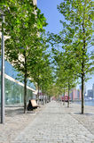 Paved pedestrian promenade in Rotterdam Netherlands Holland Royalty Free Stock Images