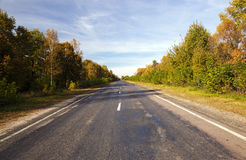 Paved road in autumn Royalty Free Stock Photo