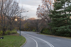 Paved road on Central Park, New York. Photo shot from inside Central Park in New York Royalty Free Stock Photo