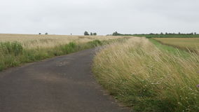 Paved road on the countryside between farmland stock video footage