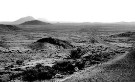 Paved road in desert Royalty Free Stock Photography