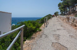 Paved road on Dragonera Stock Photography