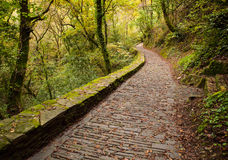 Paved road in Fragas do Eume natural park Stock Photo