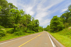 Paved road. Stock Images