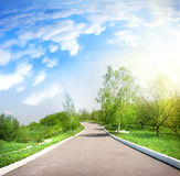 Paved road in a green park Royalty Free Stock Photo