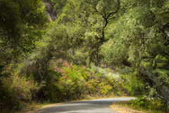 Paved road near Big Sur, California Royalty Free Stock Photography
