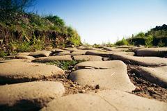 Paved Road Royalty Free Stock Photo