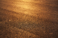 Paved road in the rays of the evening sun Stock Photography