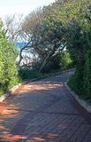 PAVED PATH AND VEGETATION NEXT TO THE SEA Royalty Free Stock Photo